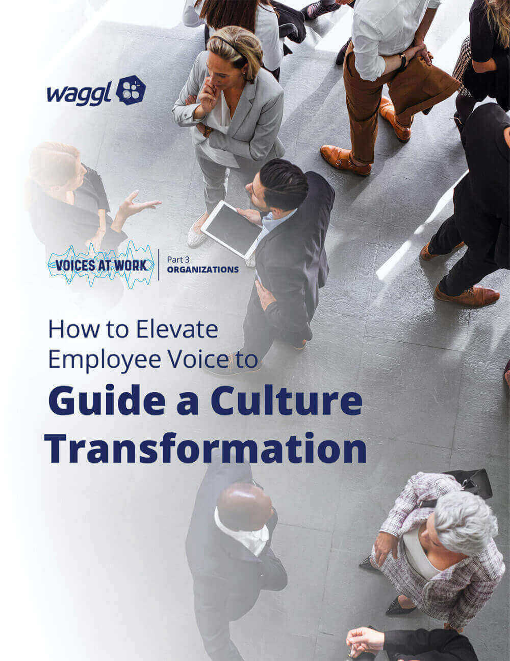 Elevate Employee Voice to Create a Culture Shift